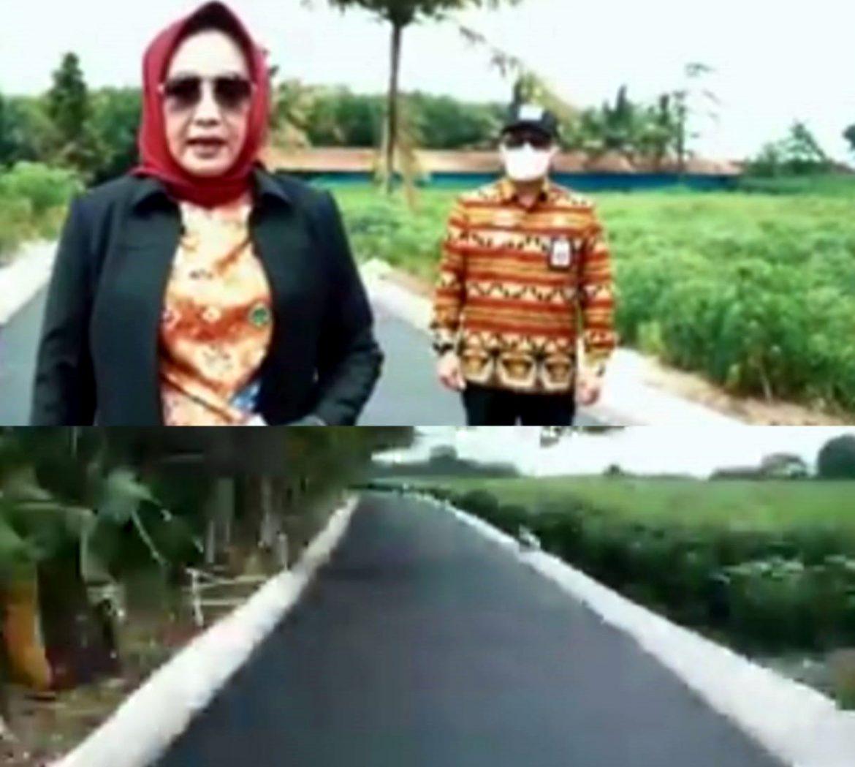 Kadis PUPR Puncak Setiawan Bersama Bupati Tuba Tinjau Pekerjaan Hotmix Jalan Damar